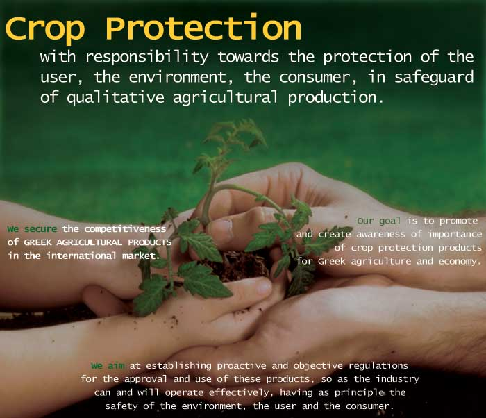 environment protection is the responsibility of Charter on corporate responsibility for environmental protection action points for 17 categories of industries central pollution control board ministry of.
